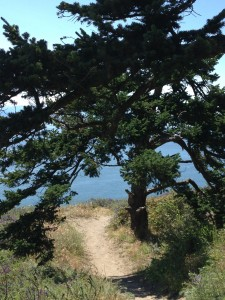 Practical Shaman ocean hike