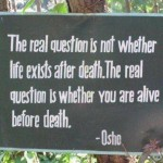 The_real_question_Osho
