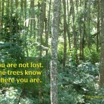 You_are_not_lost