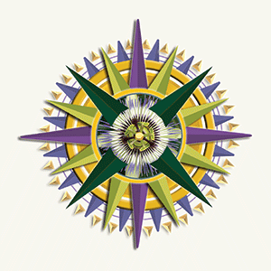Compass Card Winds represent the cardinal directions and life cycle themes: