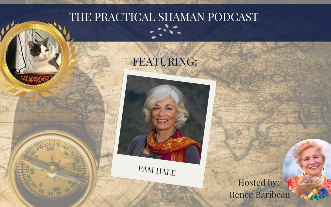 The Practical Shaman Podcast: Pam Hale, Through a Different Lens
