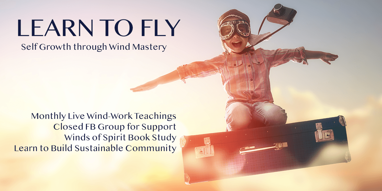 Learn to Fly Program Banner