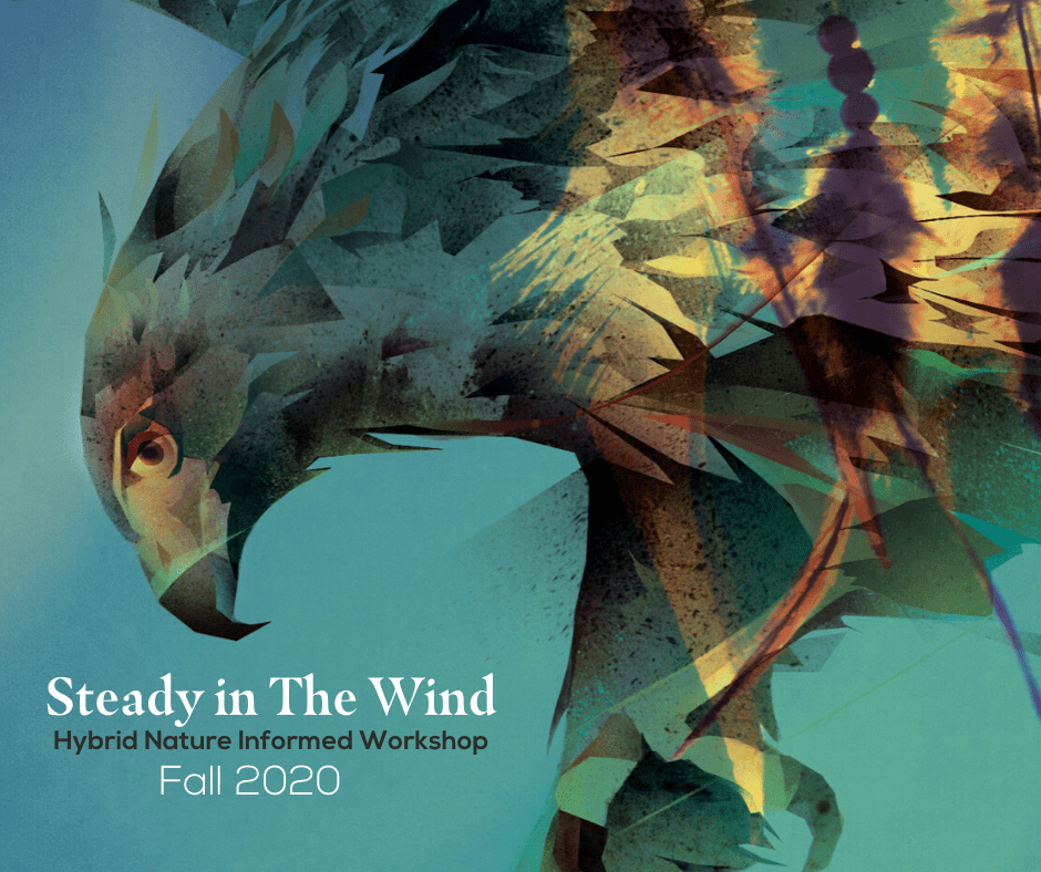 Steady in the wind