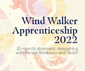 Wind Mastery 2022 Application Process is Now Open