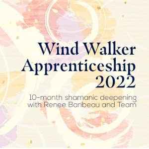 Wind Walker Adventure Deposit